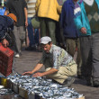 Fishermen getting ready to sell fish at the harbor of Agadir - Stock Photo