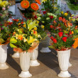 Flower market — Stock Photo