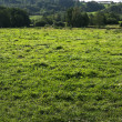 Photo of Farmland - Stock Photo
