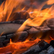 Bright flame of a fire on night — Stock Photo #6557299