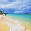 Hawaiin beach — Photo