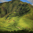 Panoram photos of Hawaiian landscape — Stock Photo #6557565
