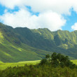 Panoram photos of Hawaiian landscape - Stock Photo