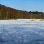Wintertime — Stock Photo #6558706