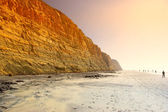 Torrey Pines Beach at La Jolla - Del Mar, California — Stock Photo