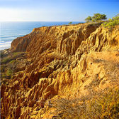 Torrey Pines - California — Stock Photo