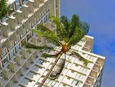 Hotel tropical — Foto de Stock