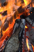 Bright flame of a fire on night — Stock Photo