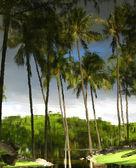 Zdjęcie palmy, odbicia w wodzie — Zdjęcie stockowe