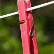 Stock Photo: Clothes-peg