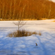 Lake in wintertime — Stock Photo