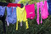 Bucato colorato sul filo — Foto Stock