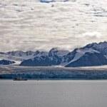 Glacier Bay Fjord: rivers of ice — Stock Photo