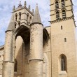 Saint Pierre Cathedral, Montpellier, France — Stock Photo