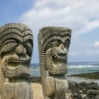 Artifacts on the Big Island of Hawaii — Stock Photo