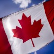 Tattered Canadian Flag — Stock Photo #6239345