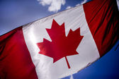 Tattered Canadian Flag — Stock Photo