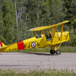 Royalty-Free Stock Photo: Tiger Moth, 1938,  Airplane