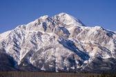 Hora v jasper alberta — Stock fotografie