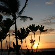 Sunset on the Big Island of Hawaii — Stock Photo