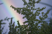 Colores del arco iris — Foto de Stock