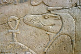 Wall of relief of the Crocodile God Sobek in Egypt — Stock Photo