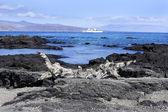 Panorama delle isole galapagos — Foto Stock