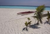 关于马尔代夫群岛的热带海滩 — 图库照片
