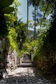Garden Pathway — Stock Photo