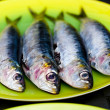Sardines ready for the BBQ — Stock Photo