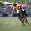 Zoom Polo Player — Stock Photo