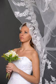 Beautiful bride dressed in white dress — Stock Photo