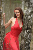 Brunette in a red dress — Stock Photo