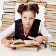 Young school girl with a lot of books — Stock Photo #6653077