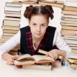 Stock Photo: Young school girl with a lot of books