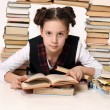 Young school girl with a lot of books — Stock Photo #6653080