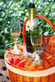 Picnic basket with champagne — Stock Photo