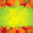 Autumn leaves frame - Stock Vector