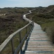 Dunes of Amrum — Stock Photo