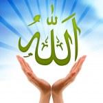 Постер, плакат: Hand holding a Allah sign