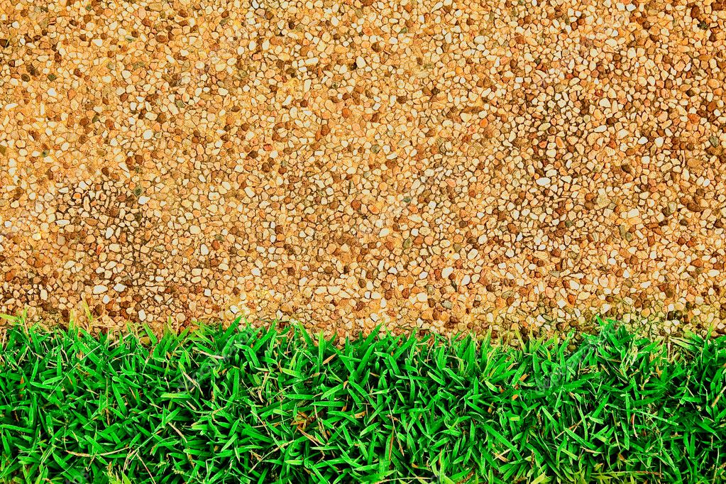 Green grass on sand texture — Stock Photo #5466592
