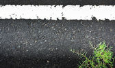 Texture closeup of an asphalt road with painted white line on with grass — Stok fotoğraf