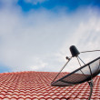 Satellite dish and electricity post in morning sky — Stock Photo