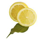 柠檬叶 — 图库照片