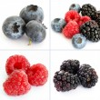 Colorful berry collage of four photos. - Stock Photo