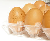Bruin eieren in de plastic doos — Stockfoto