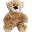 Teddy bear isolated on white background — Stock Photo