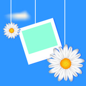 Card with frame and camomile — Stock Vector