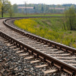 Railroad Track — Stock Photo #5533762