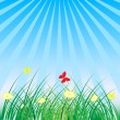 Summer - Spring Nature Background — Stock Vector